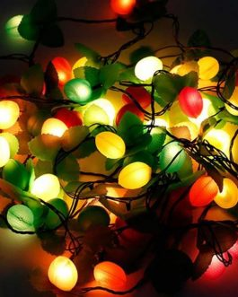 Decoration Fairy Lights (Colorful Ball)